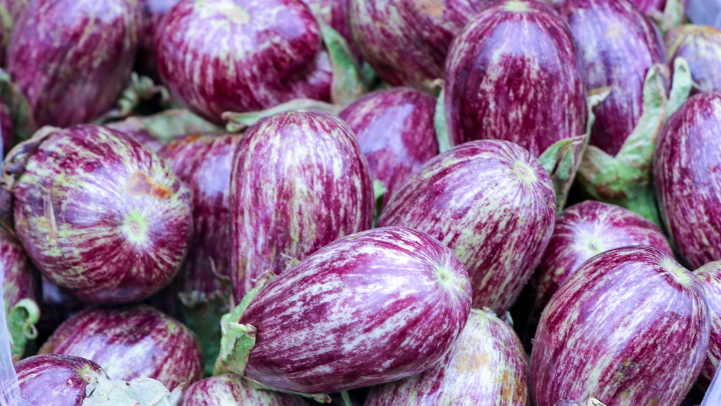 Syrian style eggplants for sale in the market of Ramtha, Jordan
